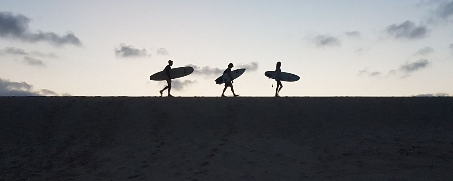 Surf silhouette